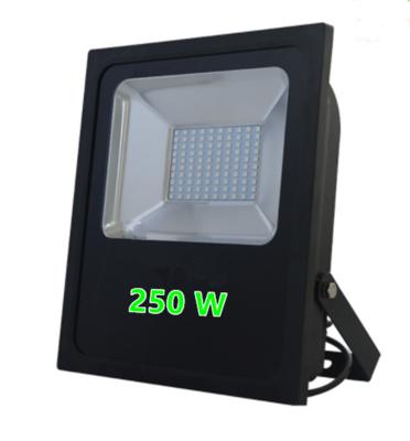 LED FLOODLIGHT PROF. IP65 250W 6000k/Daglicht